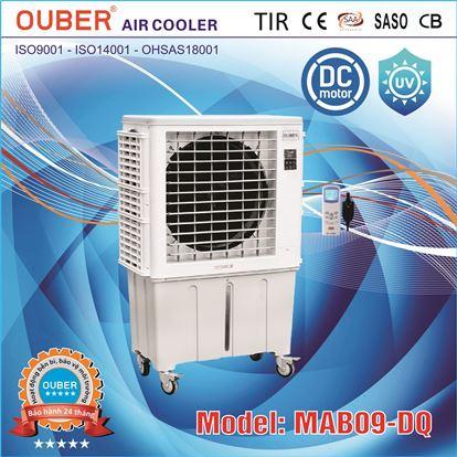 MAB09-D_637187841840129008_HasThumb_Thumb
